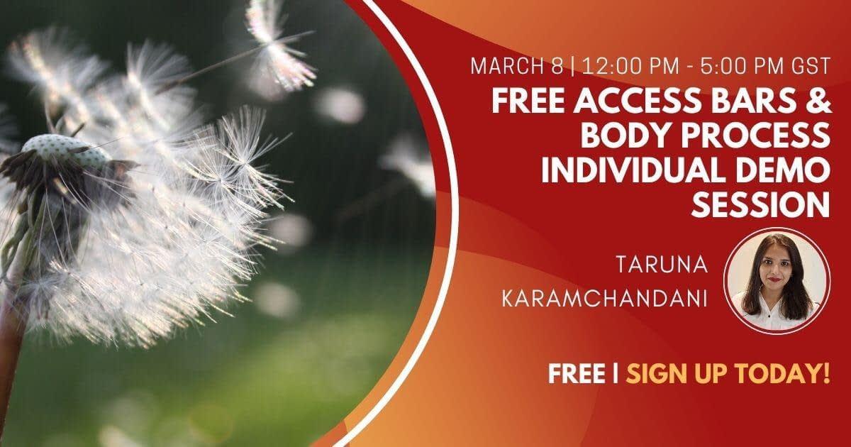 Free Access Bars & Body Process Individual Demo Session